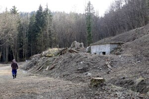 Kvôli výstavbe museli vyrúbať stromy.