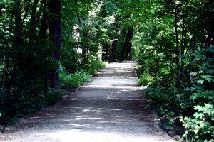 Pohľad na bratislavský lesopark Železná studnička.