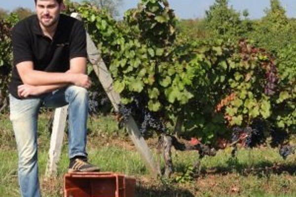Zaujímavý odbor venujúci sa vínu vzniká v Nitre, otvoria ho od budúceho školského roka.