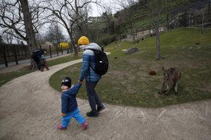 Uvoľniť by sa v Česku mali aj pravidlá nosenia rúšok vonku.