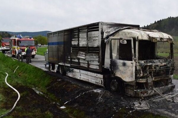 Nákladné auto zhorelo celé, dobytok neprežil.
