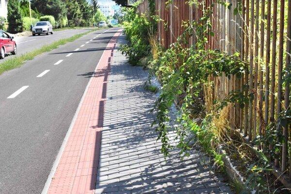 Bujnú zeleň zabrala na novom chodníku miesto chodcom.