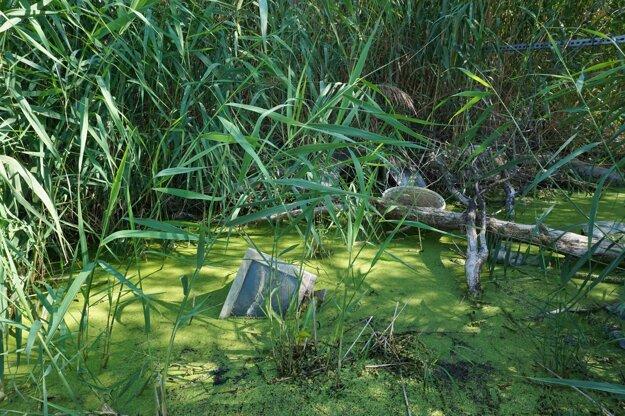 Odpad v našich riekach nie je len viditeľný. Pláva v nich aj neviditeľná hrozba: tisíce rôznych škodlivých látok.