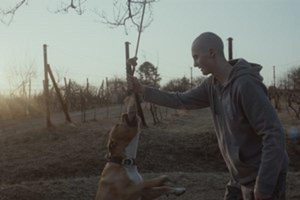 Mladý hrdina, vrhnutý do sveta neznášanlivosti. Hlavnú úlohu vo filme Môj pes Killer hrá Adam Mihál.