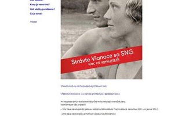 Aktuálna podoba webstránky SNG.