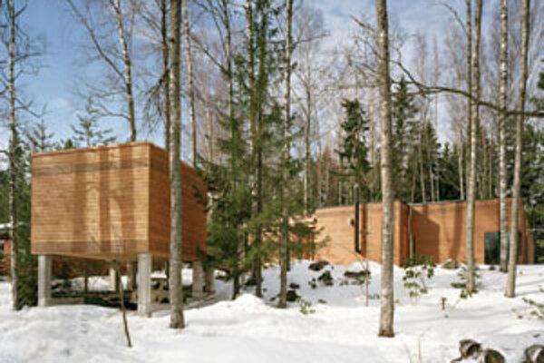 Olavi Koponen: Vila Lena, Espoo, 2001-2003.