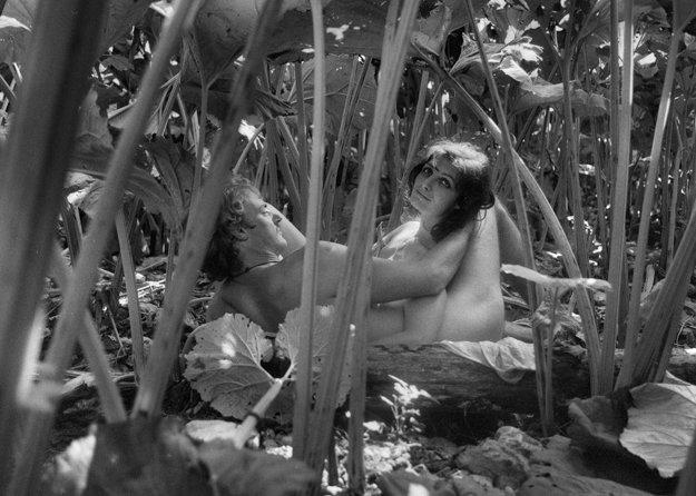 Postav dom, zasaď strom (1979), réžia: Juraj Jakubisko. Erotická scéna v lopúchoch je výtvarne a kompozične dokonalá, prsia hrdinky sú cudne prikryté lopúchovými listami. Matúš, muž bez minulosti (Pavel Nový), naruší pokojný beh života v malej dedine, stáva sa hrdinom – záchrancom a získa si srdce Heleny (Jana Březinová). Vďaka svojej živočíšnej príťažlivosti vyfúkne ženu svojmu priateľovi. Veľký príbeh lásky však zabije túžba po vlastnení – domu, ženy a jej syna, ku ktorých sa chce hrdina prepracovať hoci aj nečistými praktikami.