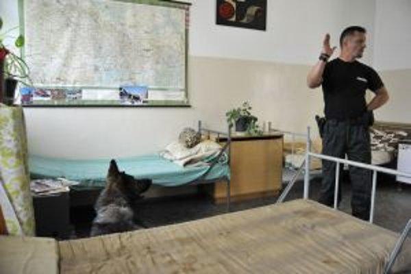 Súťaž policajných psov organiovali v Malackách už ôsmy raz.