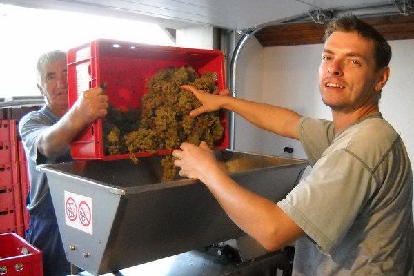 Výroba vína v rodinnom vinárstve.