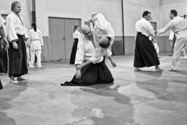 V Trenčíne sa konal seminár aikido.