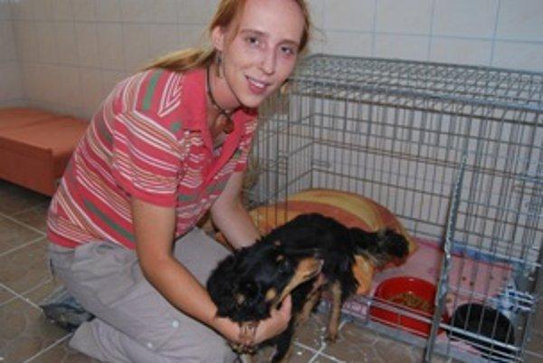 Lenka Búziková sa stará o opustených psov už niekoľko rokov.
