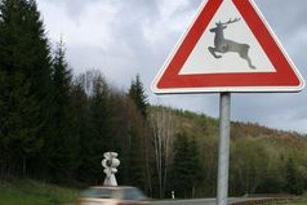 Ilustračné foto. Dopravné značky upozorňujúce na zver by mohli znížiť škody na majetku i na lesnej zveri.