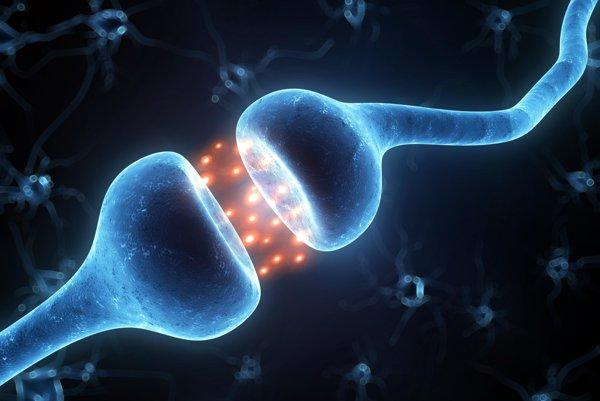 Spojenie synapsií.