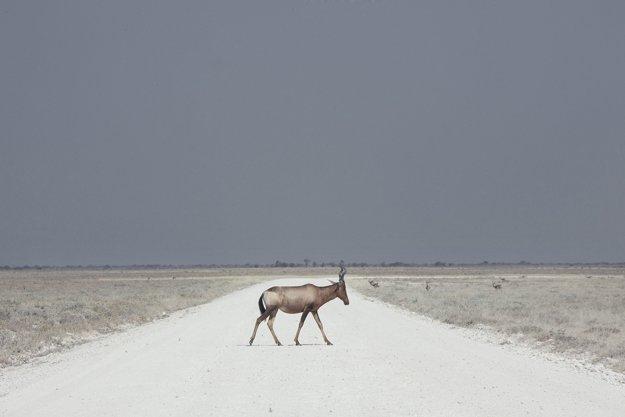 Krajina ničoty. Namíbia je jedna z najmenej obývaných afrických krajín s rozsiahlymi púštnymi a polopúštnymi oblasťami.