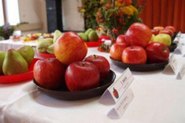 Výstava Kremnické jablko potrvá od 6. do 10. októbra.