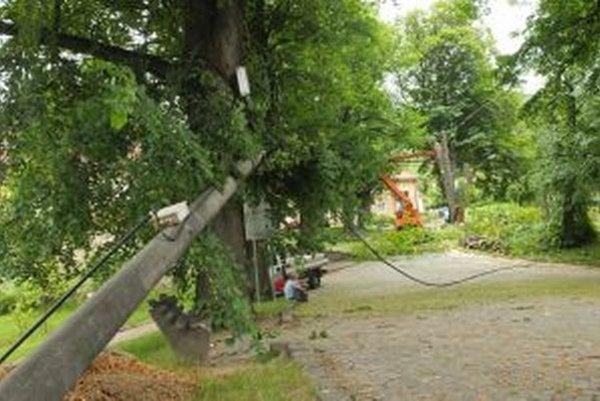 Hrubá vetva stromu strhla elektrické stĺpy.