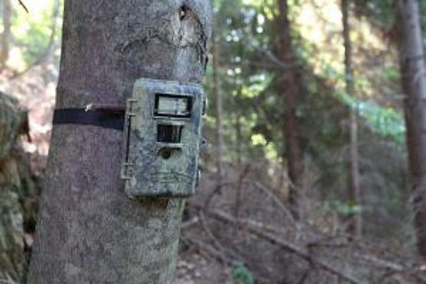 Špeciálna kamera. Používajú ju aj na pozorovanie zveri v národných parkoch.