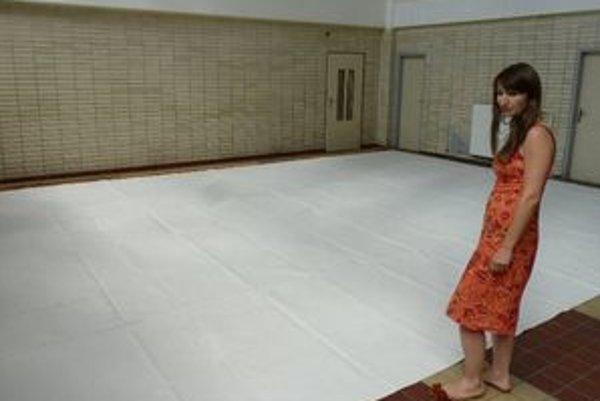 Výtvarníčka Zuzana Flimelová tvorila svoje veľkoplošné dielo priamo v priestoroch funkčnej stanice.
