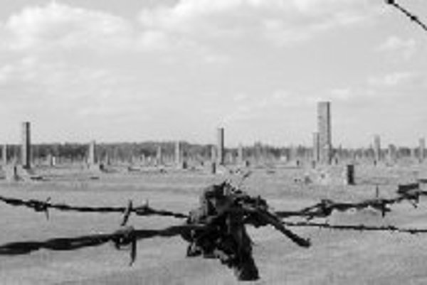 Komíny - zvyšky drevených barakov.