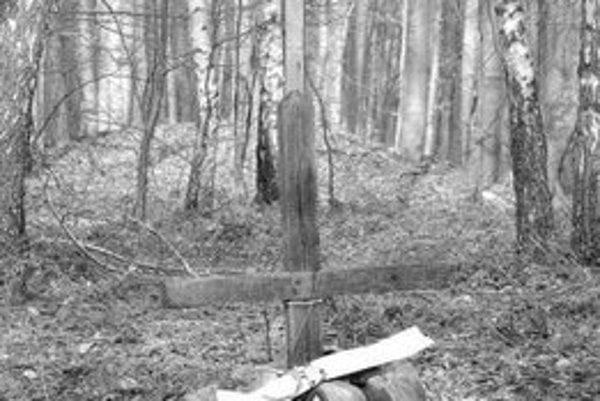 Drevený kríž na mieste pádu Il-18 na Sakrakopci.