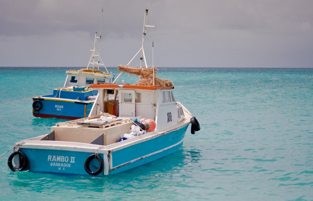 Barbados je výborné miesto na dobrodružné plavby a rybačky na mori.