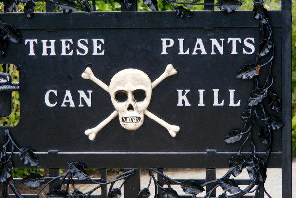 Výstrahu na vstupnej bráne do záhrady rastlinných jedov v Alnwicku nie je možné prehliadnuť.