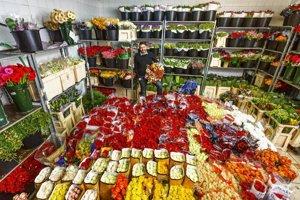 Neďaleko Zvolena v obci Kriváň vyrástla základňa jedného z najväčších predajcov rezaných kvetov na Slovensku.