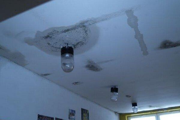 Už v roku 2013 boli stropy štadiónu LAFC zatečené a plesnivé.