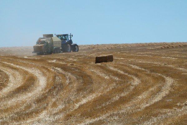 S tohtoročnou úrodou sú poľnohospodári v okrese spokojní, s cenami výkupu už menej.
