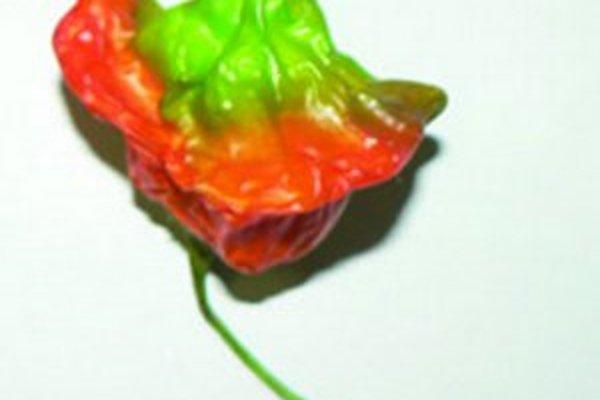 Paprika ružička