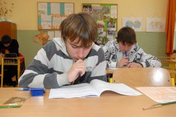 V Levickom okrese obstáli v testovaní školy z vidieka.