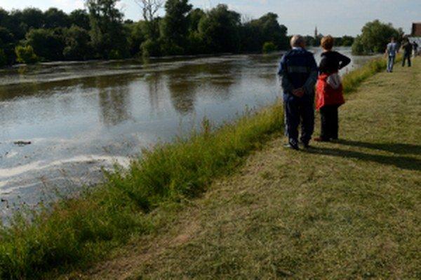 Rieka Morava, Vysoká pri Morave. Počas minuloročných povodní.