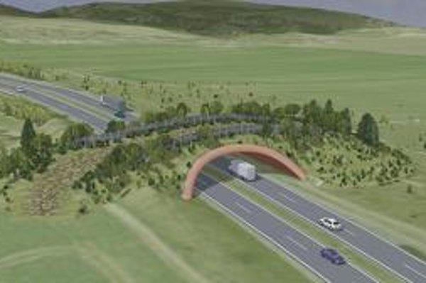 Zelený most plánujú už dlhšiu dobu, v Čechách majú takých desať.