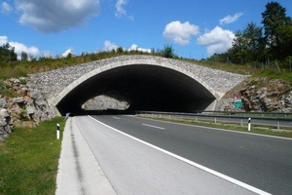 Na Slovensku je zatiaľ iba jeden takýto most pre zvieratá.