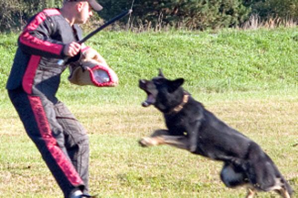 Figurant sa bráni útoku psa.