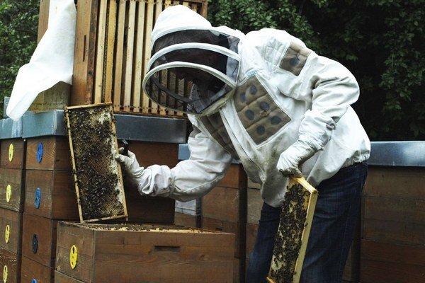 Peter Varga pri svojich včelách.