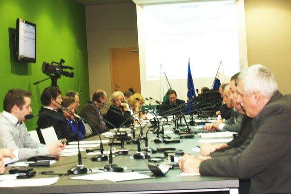 Snímka z januárového rokovania.