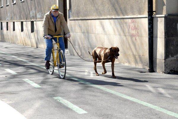 Bude zelených čiar viac? Cyklisti sú nedôverčiví.