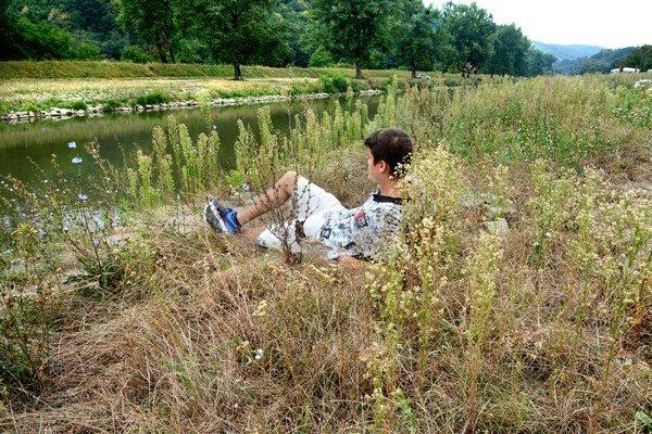 Vysoká tráva, alergie. Ľudia sú nešťastní, že vodohospodári nekosia.