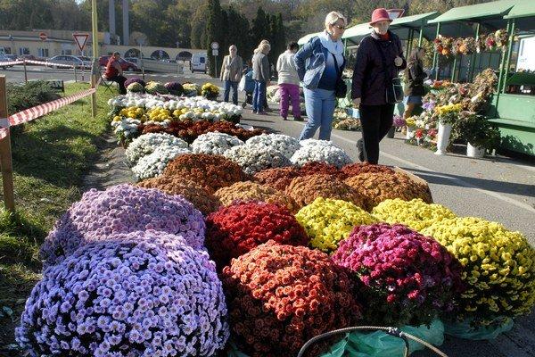Kvety v črepoch. Sú vyhľadávané, vydržia dlhšie, sú lacné.