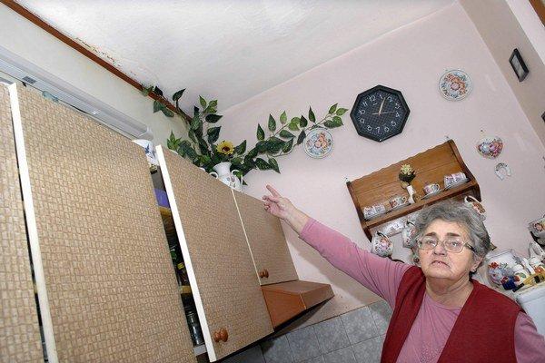Premočená stena. Pani Ľudmila ju skrýva za umelý kvet.