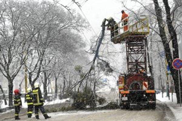 Štúrova. Zlomený strom ochromil dopravu v centre mesta.