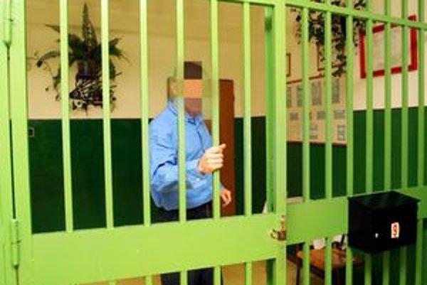 Ústav v Šaci. René má teraz sprísnený režim, hrozí mu 5 rokov natvrdo.