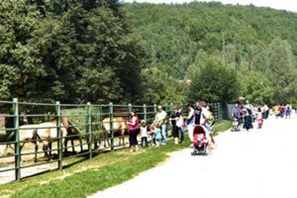 Rekordy. O návštevníkov nemá zoo núdzu. Do areálu ich chodí stále viac.