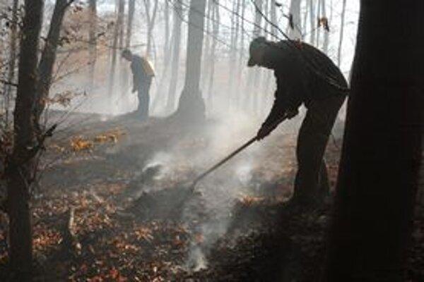 Hasiči bojujú s požiarom lesa už od stredy.