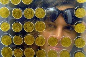 Mince z Košického zlatého pokladu.