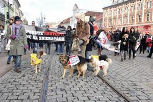 Asi dvesto ľudí a 20 štvornohých miláčikov prišlo protestovať proti krutostiam na zvieratách.