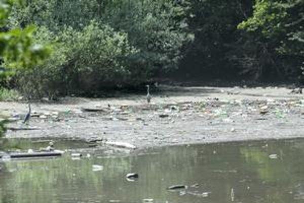 Ružínsky zmar. Takto vyzerá voda v niektorých lokalitách, vzácne čierne bociany sa brodia v odpadkoch po povodniach.