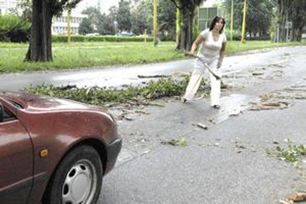 Vodička si pomohla sama. Vystúpila a odhadzovala konáre z cesty.