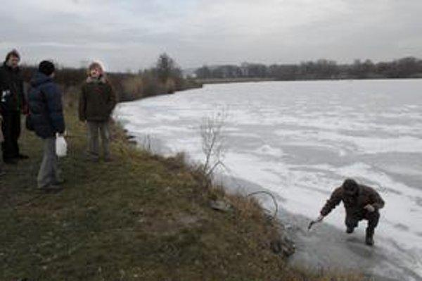 Štrkovisko v Krásnej. Naplánované je premiestnenie trvalej mokrade k jeho juhozápadnemu brehu.